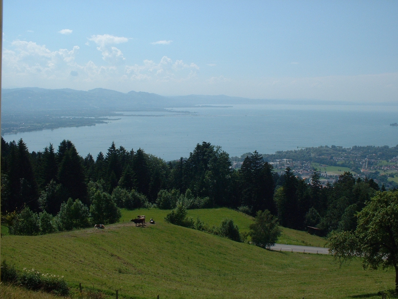 Bodensee_04_1
